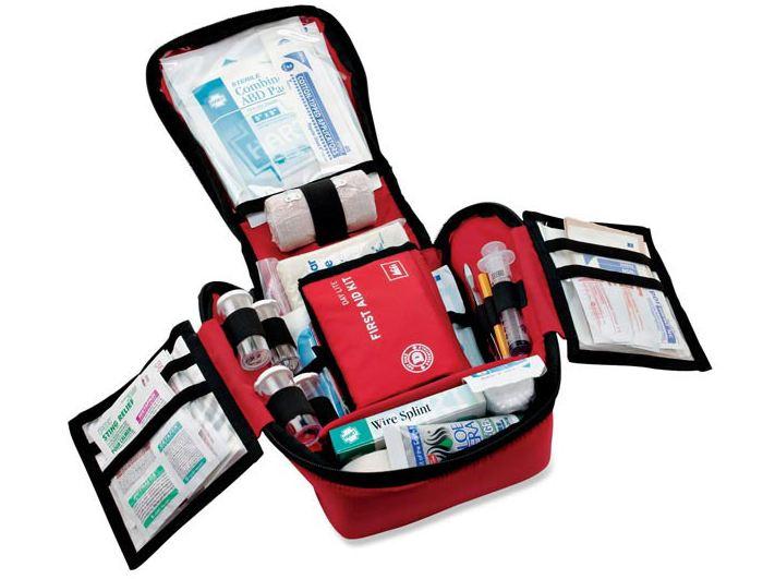 Các loại thuốc cho bé là đặc biệt cần thiết và không thể thiếu trong chuyến đi