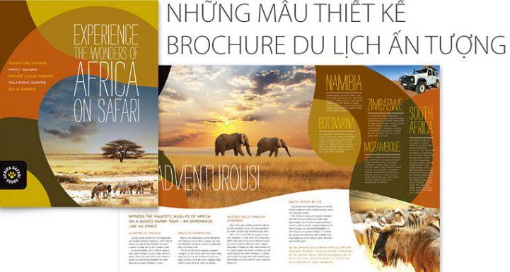 Các loại brochure du lịch